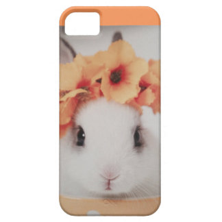 iPhone 5/5S, Barely There case iPhone 5 Covers