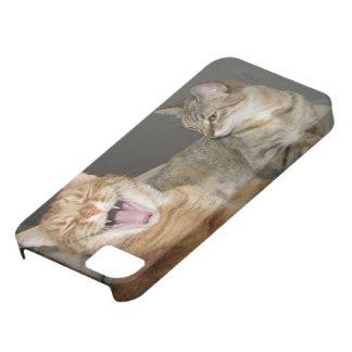 """iPhone 5/5S, Barely There del """"gato de risa"""" iPhone 5 Case-Mate Funda"""