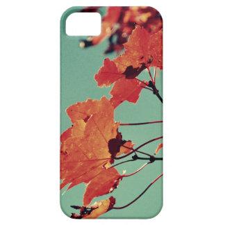 iPhone 5/5s case - Autumn Rush