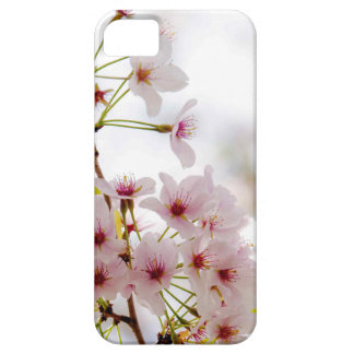iPhone 5 5s Case Cherry Blossom Design iPhone 5/5S Covers