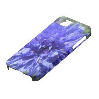 iPhone 5/5S Case - Cornflower Blue Bachelor's Btn