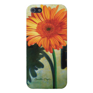 "iPhone 5/5S case ""Gerber Daisy"" by Camille Engel"
