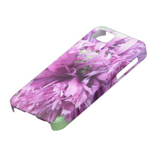 iPhone 5/5S Case - Purple Aster