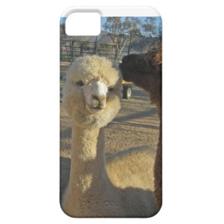 IPhone 5/5S Case with Alpacas