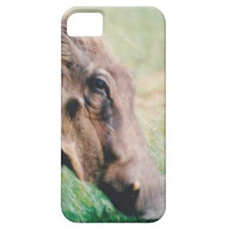 iPhone 5/5S, cerdo duro de la verruga de la imagen iPhone 5 Fundas