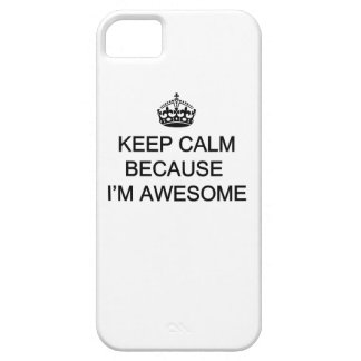 iPhone 5/5S, Keep Calm Awesome iPhone SE/5/5s Case