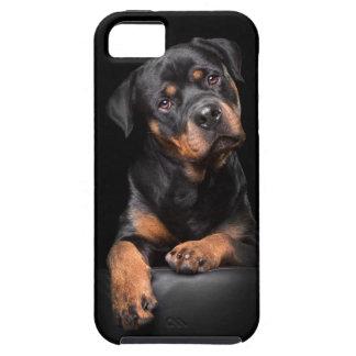 iPhone 5/5s Rottweiler iPhone SE/5/5s Case