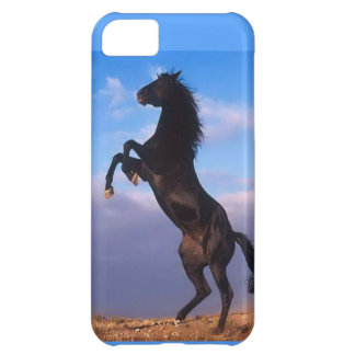iPhone 5 Barely There Case Horse Power