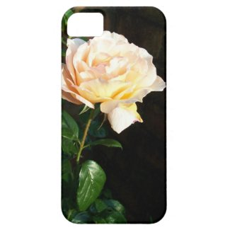 iPhone 5 Barely There Case, Pale Pink Rose iPhone 5 Cases