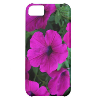 iPhone 5 Barely There Case - Petunias