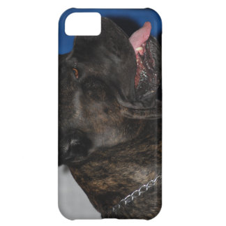 iphone 5 barely there qpc template iP - Customized iPhone 5C Cover