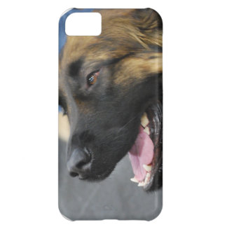 iphone 5 barely there qpc template iP - Customized Case For iPhone 5C