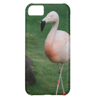 iphone 5 barely there qpc template iP - Customized iPhone 5C Covers