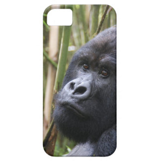 iphone 5 barely there qpc template ip - Customized iPhone SE/5/5s Case