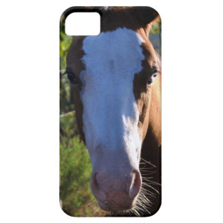 iPhone 5 Barely There Universal Case