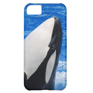 iphone 5 barly there QPC template iPh - Customized iPhone 5C Cases