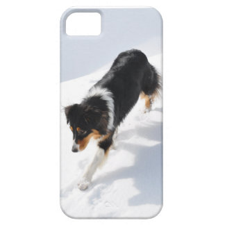 iPhone 5 Case  Aussie in the Snow