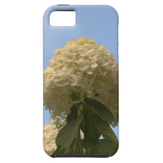 iPhone 5 Case Beautiful Lime Hydrangea Flowers