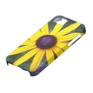 iPhone 5 Case - Black-Eyed Susan