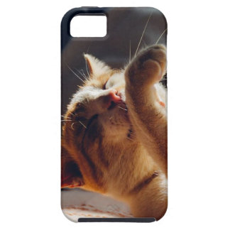 iPhone 5 Case | Cats are Awesome
