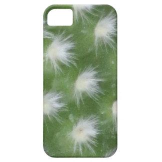 iPhone 5 Case - Galápagos Prickly Pear Cactus