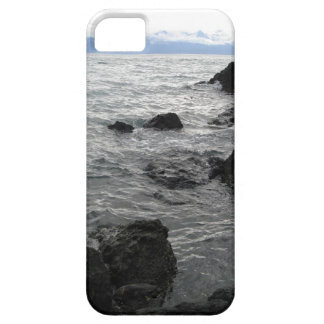 iPhone 5 Case - Gastineau Channel Waves
