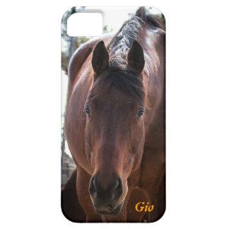 iPhone 5 case Gio