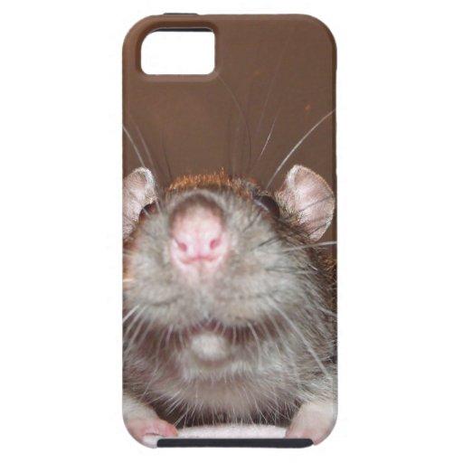 iphone 5 case - grinning rat