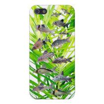 IPhone 5 Case of Corydoras