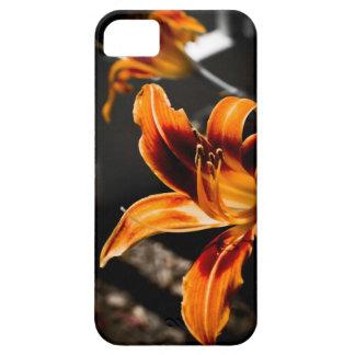 iPhone 5 Case - Orange Red Daylily