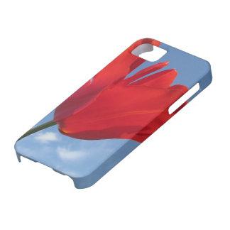 iPhone 5 Case - Red Tulip Blue Sky