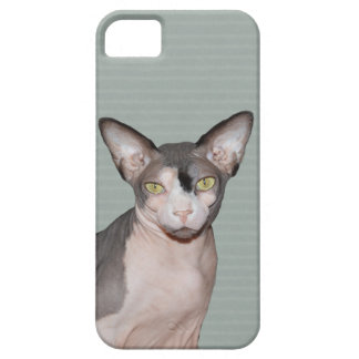 iPhone 5 Case | Sphynx Cat Ninja