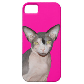 iPhone 5 Case | Sphynx Cat Ninja Pink