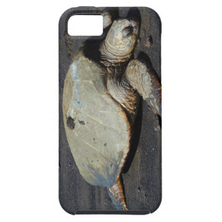 iPhone 5 Case - Turtle
