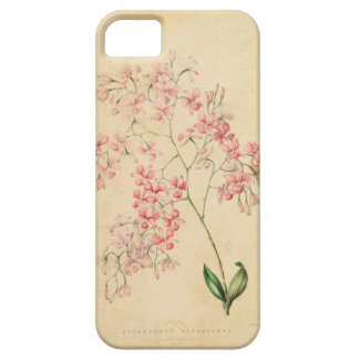 iPhone 5 Case - vintage orchid illustration