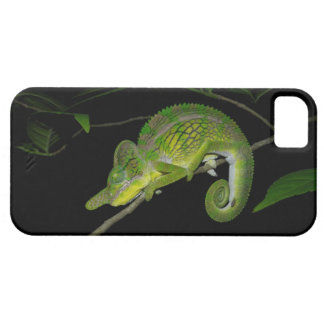 iPhone 5 case with a chameleon on a branch