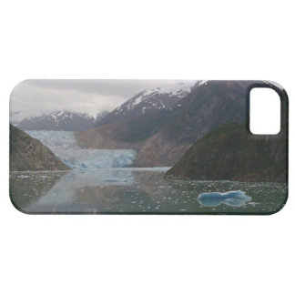 iPhone 5 Case With Alaskan Iceberg Design