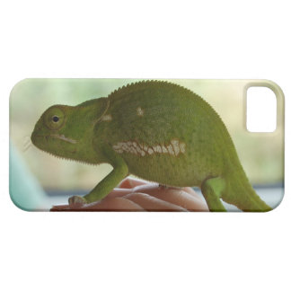 iPhone 5 case with chameleon in fingers