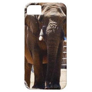 iPhone 5 case with elephant