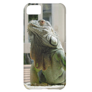 iPhone 5 case with large pet lizard