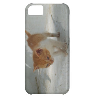 iPhone 5 case with orange and white kitten