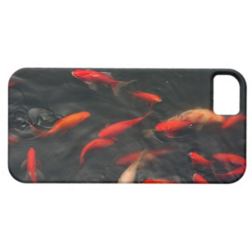 iPhone 5 case with picture of fish pond