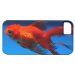 iPhone 5 case with pretty goldfish