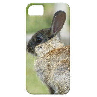 iPhone 5 case with rabbit in profile
