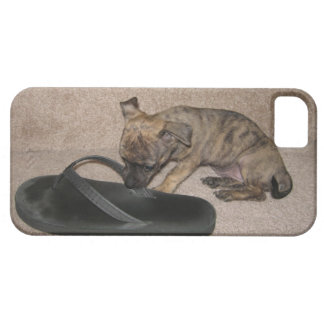 iPhone 5 case with tiny puppy chewing on flip-flop