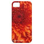 iPhone 5 Chrysanthemum Case iPhone 5 Case