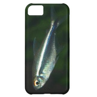 iPhone 5 con la tetra imagen de los pescados que b