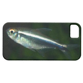 iPhone 5 con la tetra imagen de los pescados que Funda Para iPhone SE/5/5s