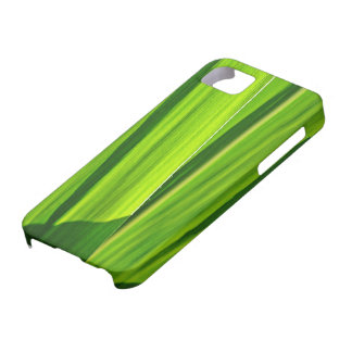 iPhone 5 covering green corn sheets iPhone SE/5/5s Case