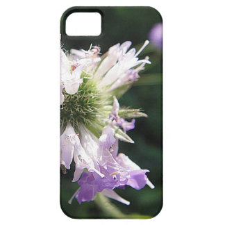 iPhone 5 covering of purple game bloom iPhone SE/5/5s Case